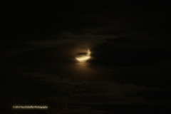 La Lune - One of my biggest muses is the moon.