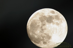 Luna Lu 2 - One of my biggest muses is the moon.